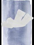 White-Stockings-6355