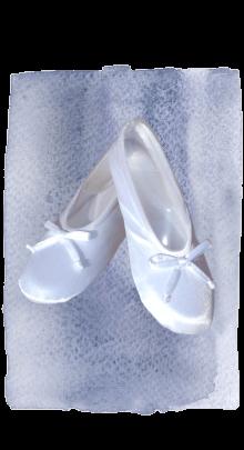 satin slipper