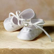 silk shoe