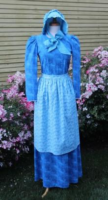 Blue-pioneer